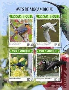 Z08 IMPERF MOZ190430a MOZAMBIQUE 2019 Birds of Mozambique MNH ** Postfrisch