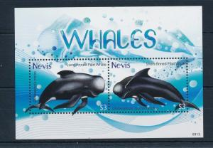 [34994] Nevis 2009 Marine Life Whales MNH Sheet