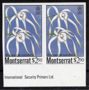 Montserrat 1985 $2.50 Brassavola Cucullata IMPERF PAIR SG 634 Scott 557 UMM/MNH