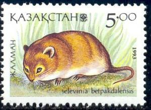 Desert Dormouse, Kazakhstan stamp SC#41 MNH
