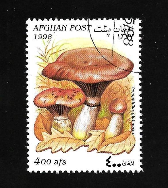 Afghanistan 1998 - U - Unlisted - Pic 1 *