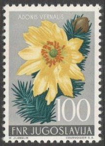 Yugoslavia  1955 Sc 432  100d  Adonis Flower MLH VF cv $21