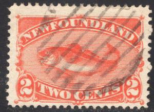 NEWFOUNDLAND SCOTT 48