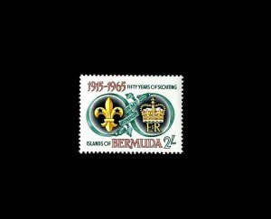 BERMUDA - 1965 - SCOUTS - BADGE & ROYAL CIPHER - MINT - MNH - SINGLE!