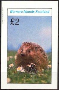 {B079} Bernera Scotland Hedgehogs S/S 2£ MNH Cinderella !!