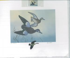 SOUTH CAROLINA #9 1989 DUCK STAMP PRINT BLUE WINGED TEAL ARTIST PROOF Lee Cable