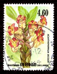 Sri Lanka 1984 Orchid Flowers, Acanthephippium bicolor 4.60r Sc.723 Used (#4)