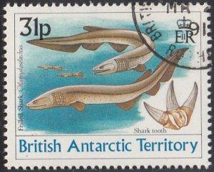 British Antarctic Territory 1991 used Sc #174 31p Frilled shark