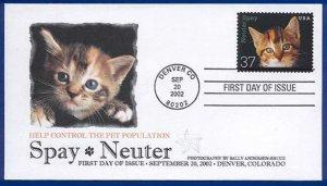 FPMG 3670 Spay Neuter Cats Denver CO