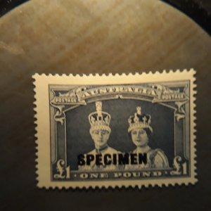 australia 179 1938  single ( specimen OP)  VF  NH
