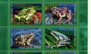 Russia 2021 fauna frogs 4v MNH