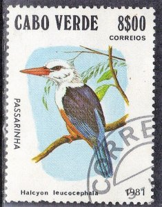 CAPE VERDE  SC# 438 **USED** 8c 1981  BIRD    SEE SCAN