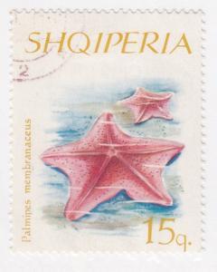 Albania, Sc # 934, CTO-H, 1966, Starfish
