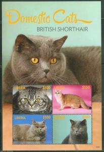 LIBERIA 2014  DOMESTIC CATS BRITISH SHORTHAIR SHEET OF FOUR MINT NH