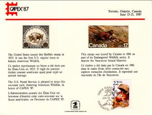 US SC117 Capex Souvenir Card Cancel
