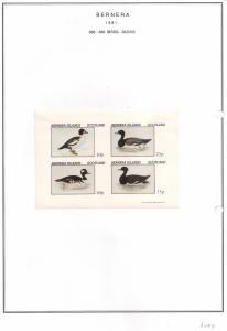 SCOTLAND - BERNERA - 1981 - Birds, Ducks (1) - 4v Imperf, Sheet - MLH