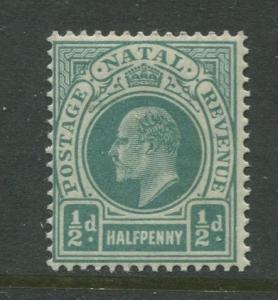 Natal - Scott 81 - KEVII Definitive Issue -1902 - MNH - Single 1/2p  Stamp