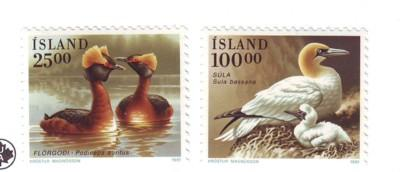 Iceland Sc721-2 1991 Bird stamps mint NH