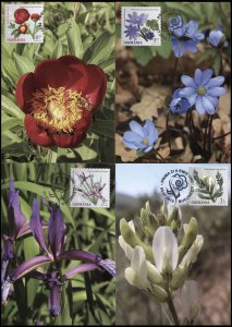 Romania. 2015. Flowers from Botanical Gardens (Mint) Set of 4 Maxi Cards