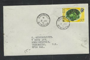 DOMINICA COVER (P1902B) 1976 QEII 20C FRUIT COLIHAUT TO ENGLAND