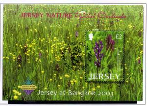 Jersey Sc 1084a 2003 Bangkok Wild Orchids stamp sheet used