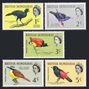 Br Honduras 167-171,MNH.Michel 164X-168X. Birds 1962.Currassow,Creeper,Jacana,