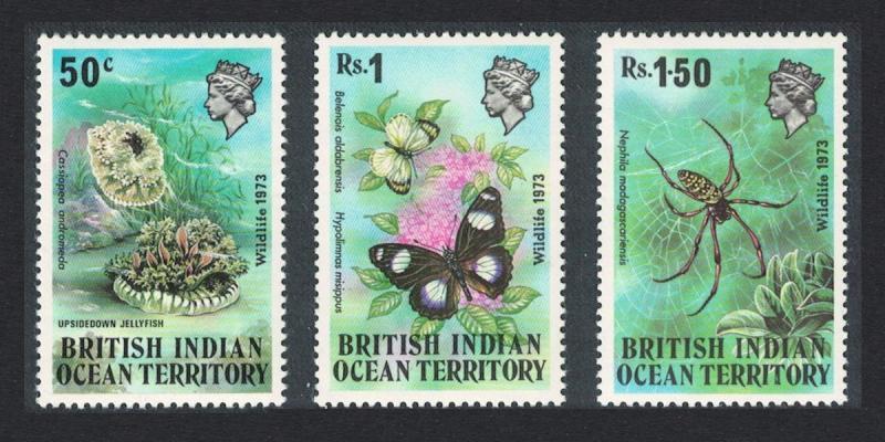 BIOT Butterflies Spider Jellyfish Wildlife 1st series SG#53-55
