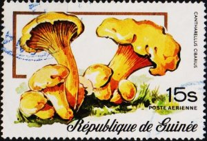 Guinea. 1977 15s S.G.919  Fine Used