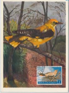 52654 - SAN MARINO -  FDC MAXIMUM CARD - 28.01.1960  ANIMALS:  BIRDS - 1 Lira