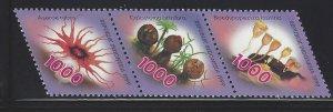 1834 Mushrooms CV$3