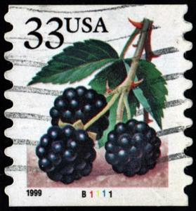 SC#3304 33¢ Blackberries Plate Single: #B1111 (1999) Used