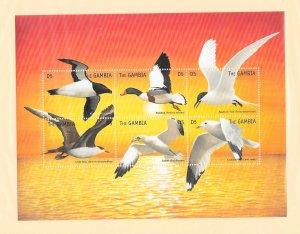 BIRDS -  GAMBIA #2573  SHEET OF 6  MNH
