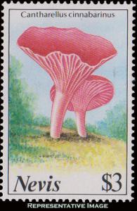Nevis Scott 555 Mint never hinged.