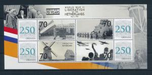 [81138] Grenada 2008 Second World war Liberation of Netherlands Sheet MNH