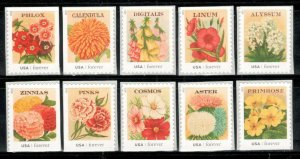 4754-63 Vintage Seed Packets Set Of 10 Mint/nh Free Shipping
