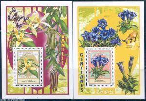 Kongo 2012 Blumen Ausgabe Set mit Zwei Souvenir Blätter Neuwertig Nh