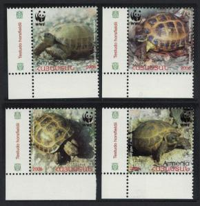 Armenia WWF Four-toed Tortoise 4v Bottom Left Corners SG#605-608 MI#561-564