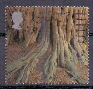 Great Britain 2000 used milennium projects 8th set 2nd tree roots      #