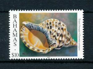 [99631] Bahamas 1996 Marine Life Sea shell Year 1997  MNH