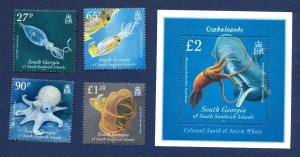 SOUTH GEORGIA - # 398-402; SG 487/MS491 - MNH - marine life, cephalopods - 2009