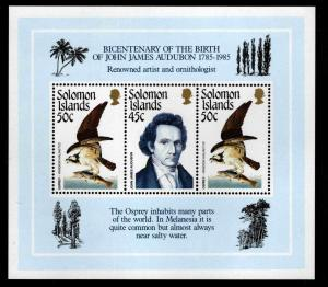 Solomon Islands Scott 556 MNH** 1995 Audubon Bird souvenir sheet