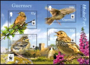 GUERNSEY 2017 WWF BIRDS MEADOW PIPIT OISEAUX VOGEL UCCELLO AVES [#1701]