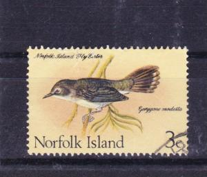NORFOLK ISLAND 1970 Birds 3c Flyeater used