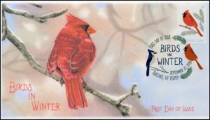 18-257, 2018, Birds in Winter, DCP Postmark, Cardinal, FDC