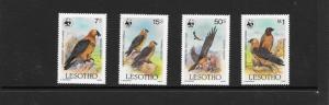 BIRDS-VULTURES - WWF LESOTHO #512-515  MNH