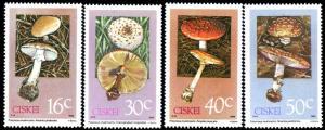 Ciskei - 1988 Poisonous Fungi Set MNH** SG 141-144