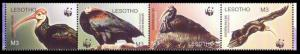 Lesotho WWF Southern Bald Ibis Birds Strip of 4v head right SG#1934-1937