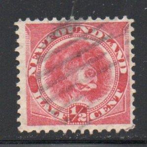 Newfoundland Sc 56 1887 1/2c rose red Dog stamp used