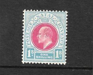 NATAL 1904-08  1/-  KEVII  MLH  SG 155