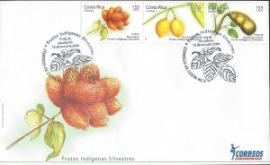 COSTA RICA INDIGENOUS WILD FRUITS Sc 596 FDC 2006